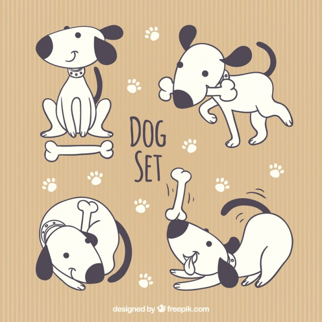 626x626 Cute Dog Collection Vector Free Download