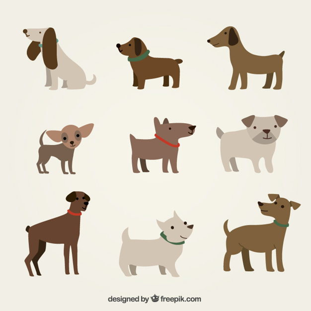 626x626 Cute Dogs Illustration Vector Free Download