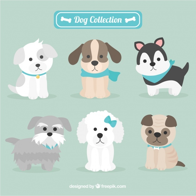 626x626 Dog Vectors, Photos And Psd Files Free Download