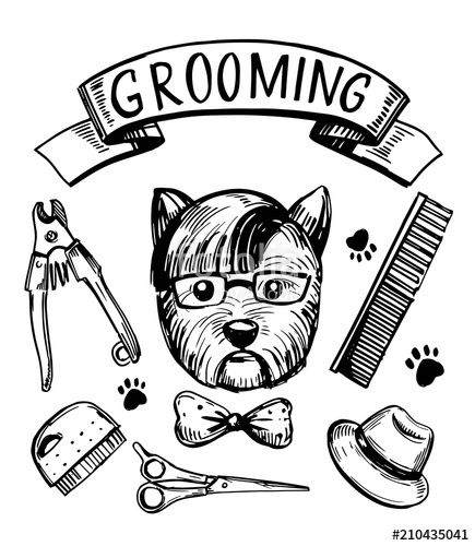435x500 Dog Grooming Set. Hand Drawn Vector Stock Image And Royalty Free