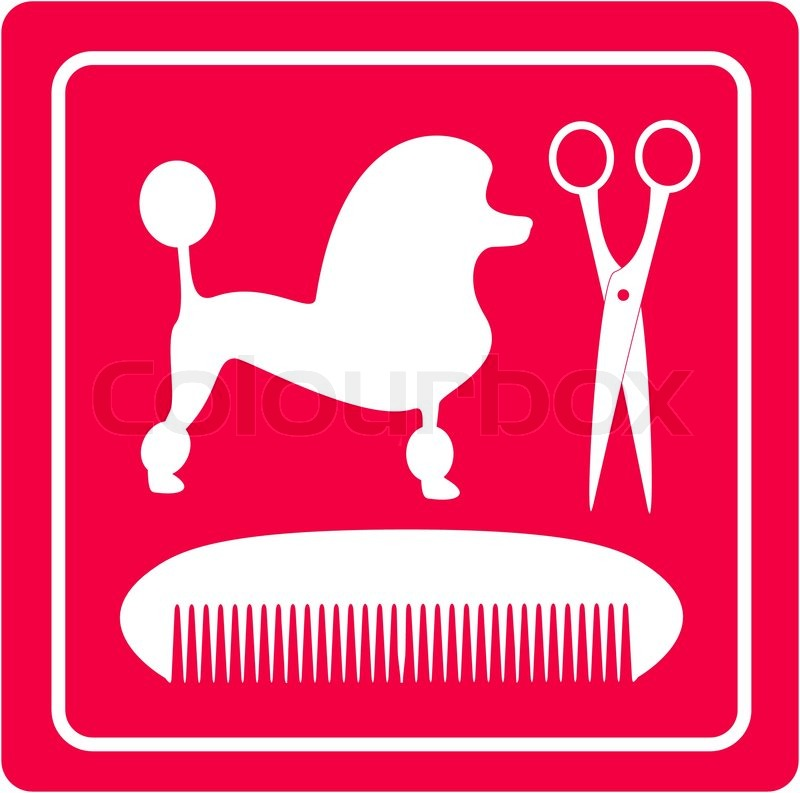 800x793 Grooming Icon With Poodle Dog, Scissors And Comb Stock Vector