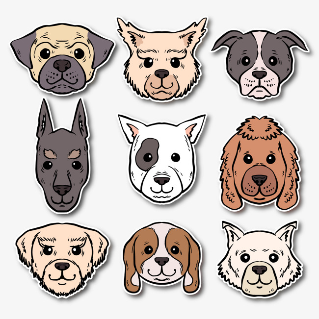 650x651 Vector Dog Head Picture, Dog Vector, Head Vector, Dog Clipart Png