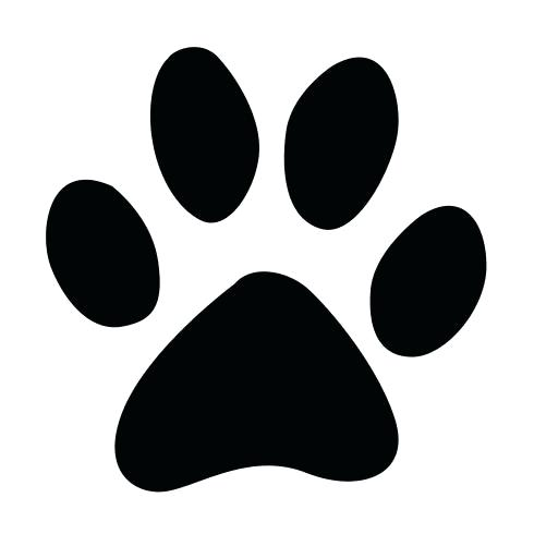 490x490 Paw Print Vector Icon Template Strand Definition Biology