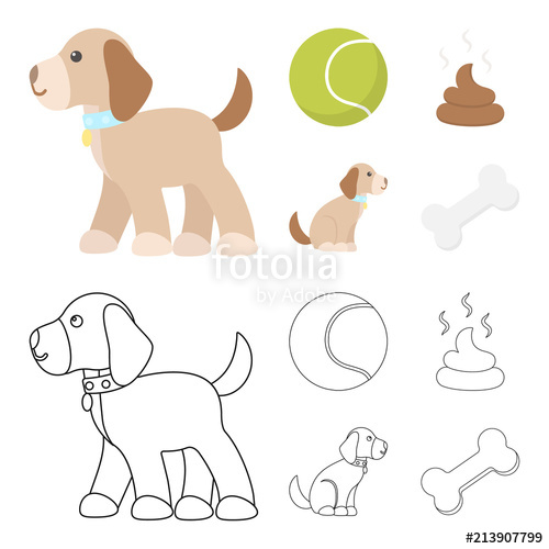 500x500 Dog Sitting, Dog Standing, Tennis Ball, Feces. Dog Set Collection