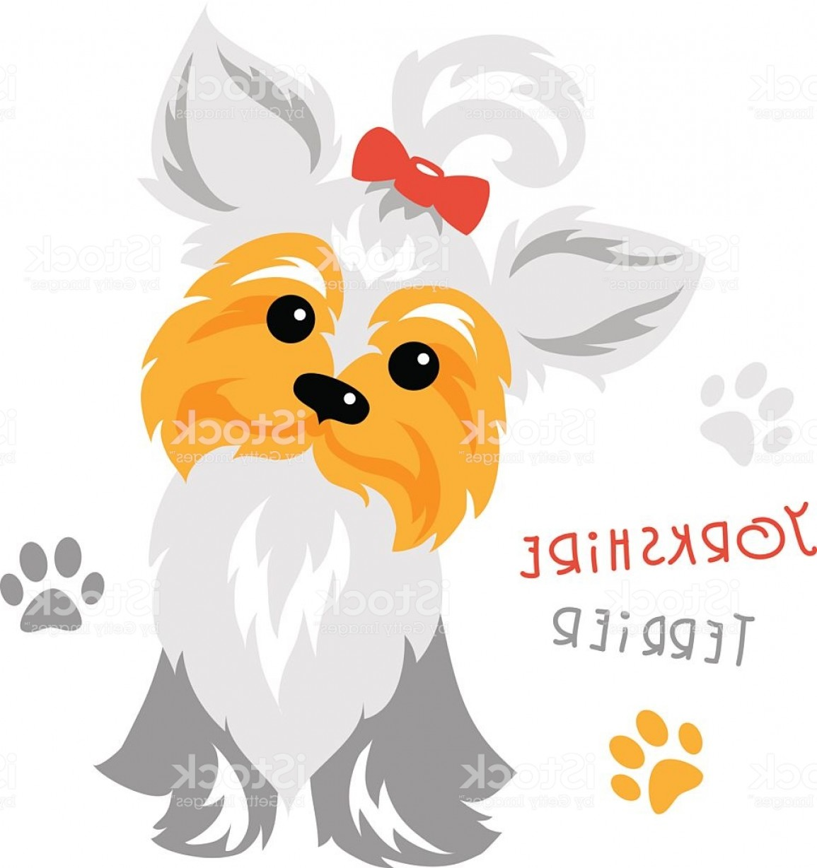 1155x1228 Vector Funny Yorkshire Terrier Dog Sitting Gm Lazttweet
