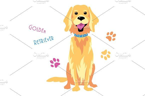 580x386 Vector Sketch Funny Golden Retriever Dog Sitting Funny Golden