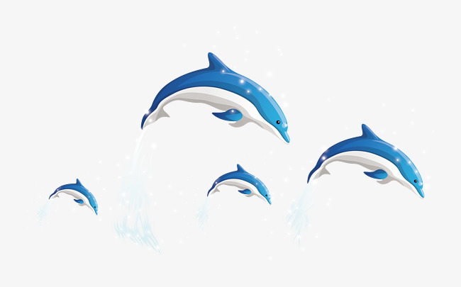 650x405 Dolphins Vector, Dolphin, Vector, Whale Class Png And Vector For