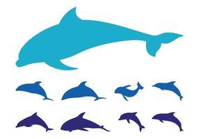 286x200 Dolphin Free Vector Art