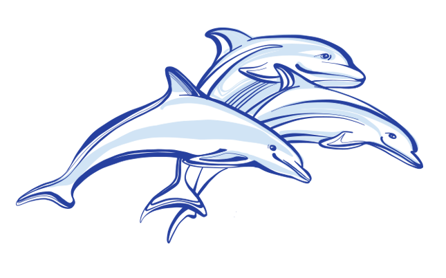 Dolphin Vector Free