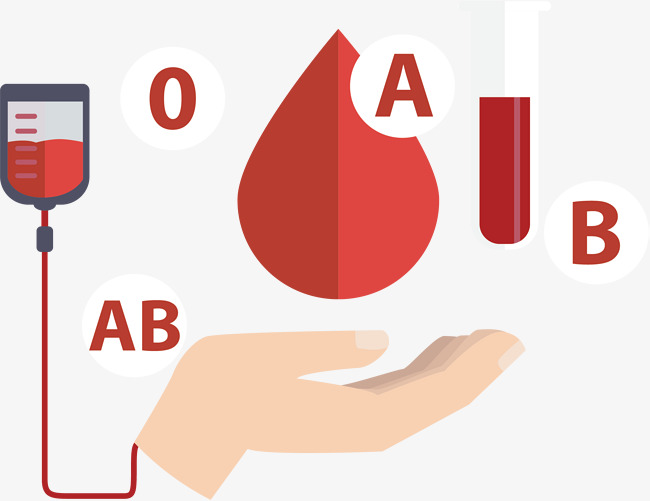 650x501 Blood Donation, Vector Material, Blood Bank Png And Vector For
