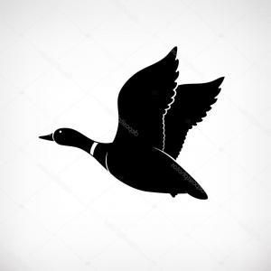 300x300 Duck Hunting Background Hunter Gm Lazttweet