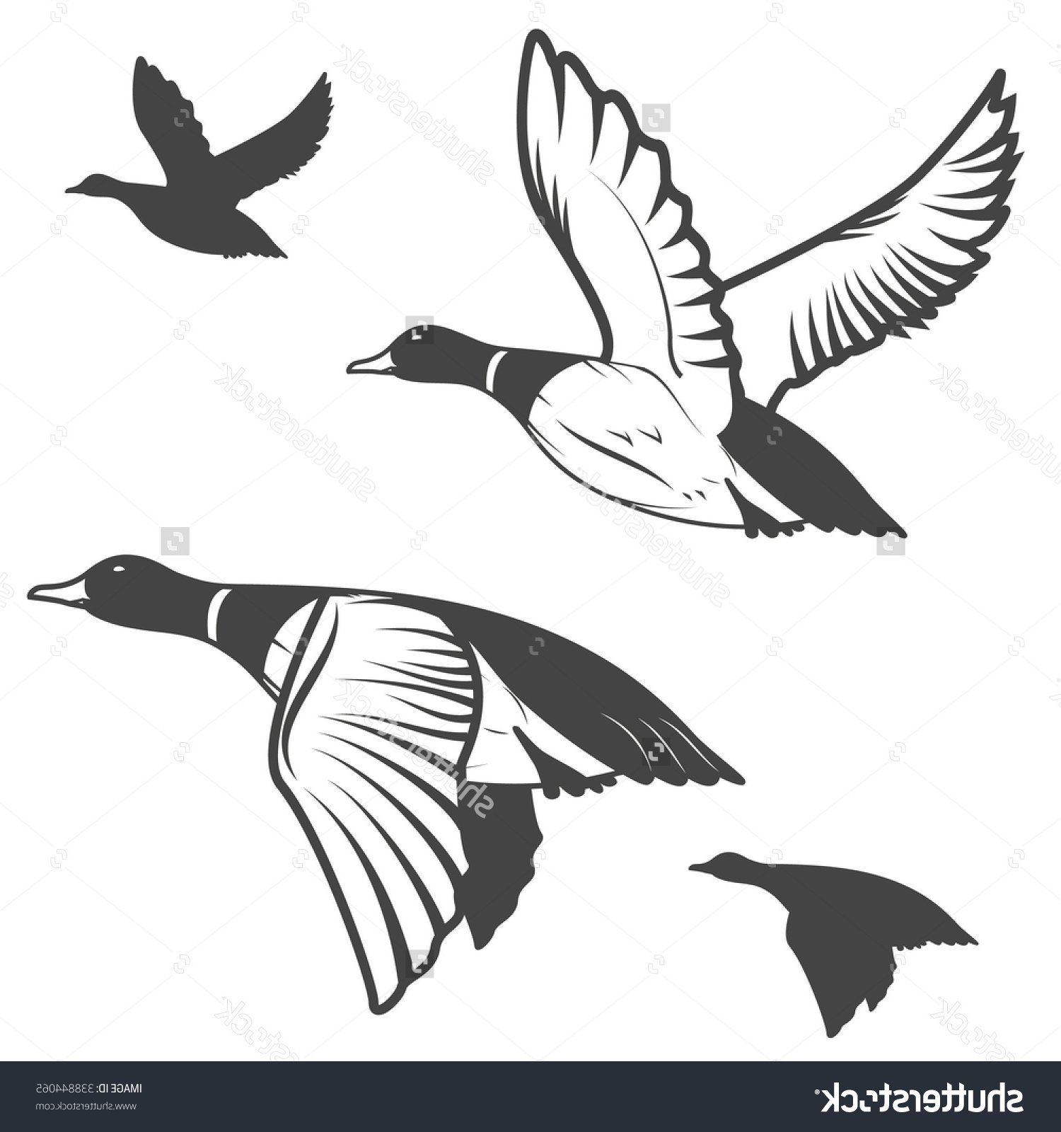 1500x1600 Hunting Clipart Duck Hunting 3624055