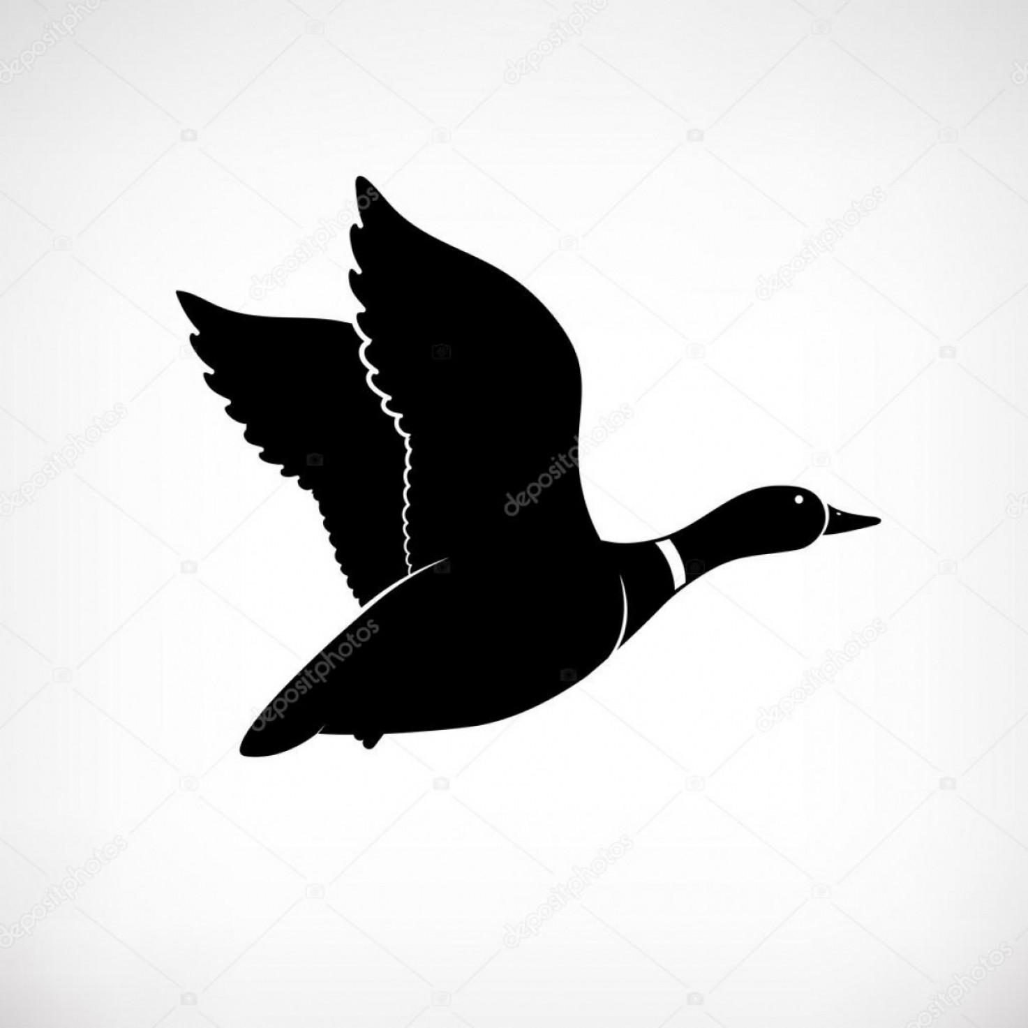 1473x1473 Stock Illustration Flying Duck Vector Mallard Duck Shopatcloth