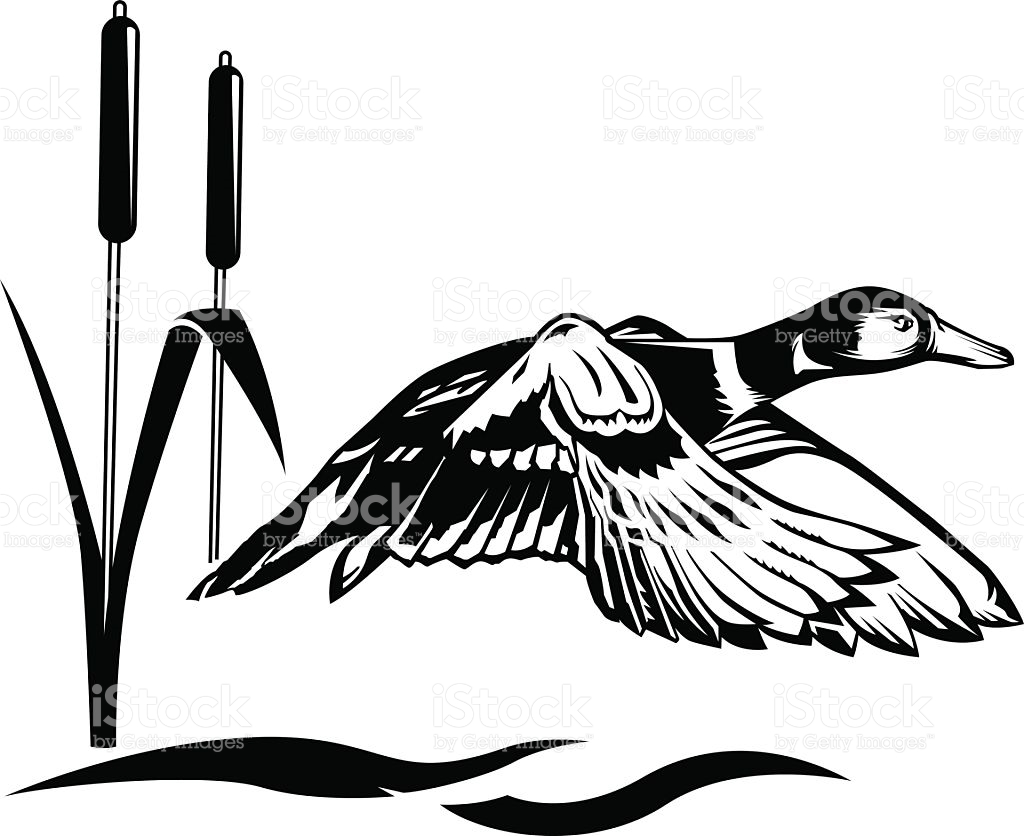 1024x836 Duck Hunting Clip Art Vectors Free Cliparts