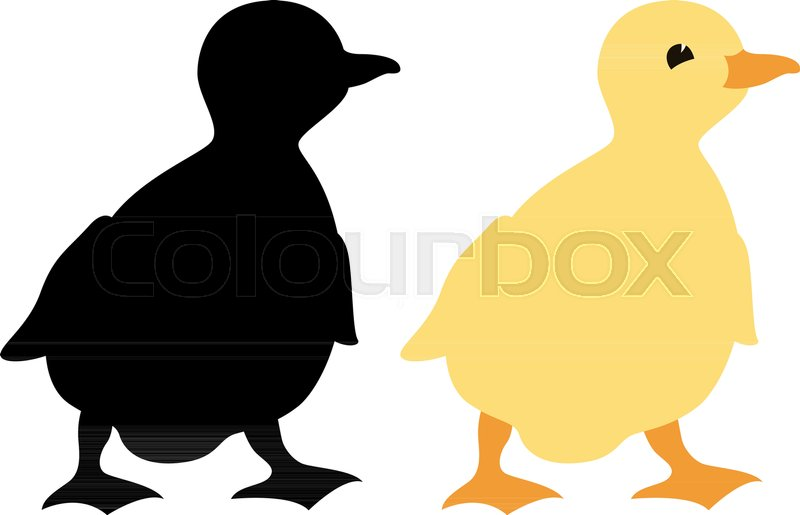 800x515 Duckling Vector Illustration Profile Side Flat Style Black
