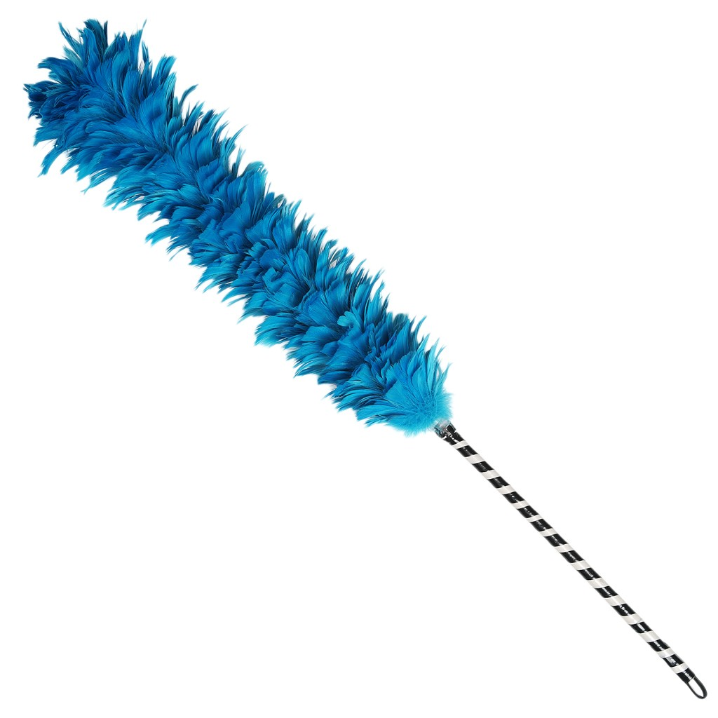 1024x1024 Feather Duster Clipart