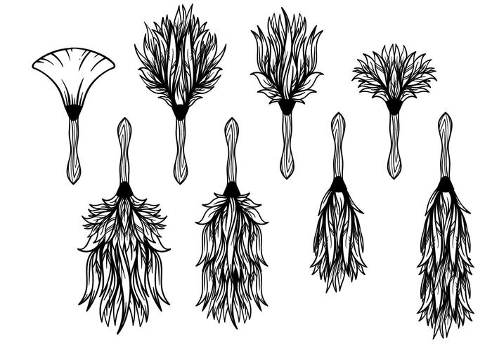 700x490 Free Feather Duster Vector