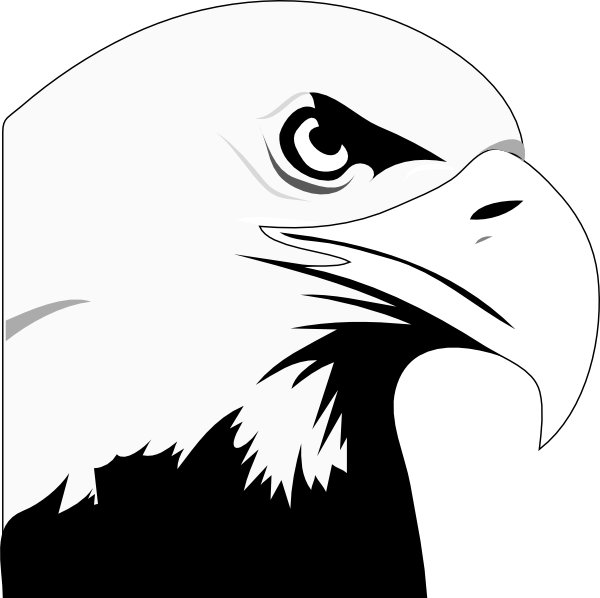 Eagle Eye Vector