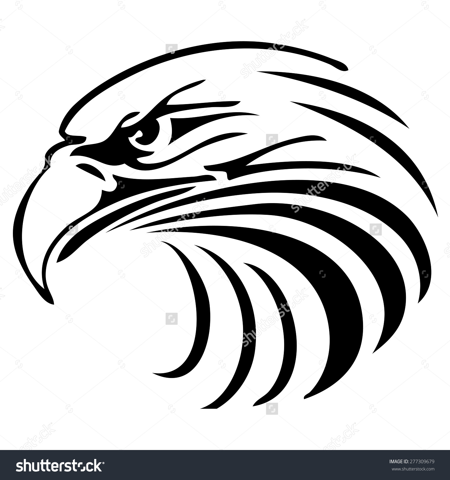 Eagle Face Vector