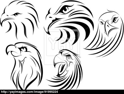 512x389 Eagle Face Silhouette Vector