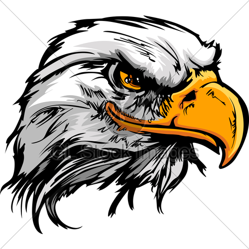 500x500 Eagle Face Vector