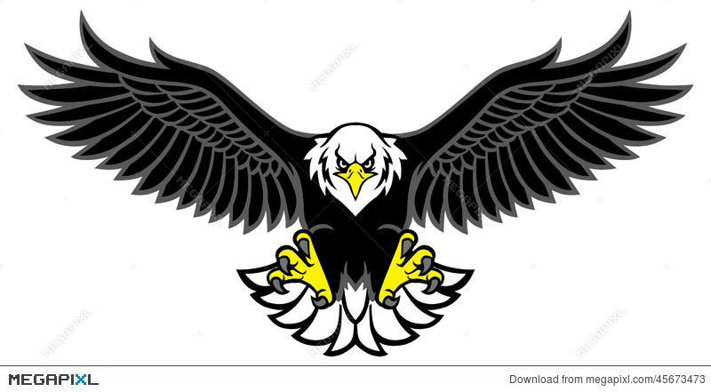 800x441 Eagle Mascot Spread The Wings Illustration 45673473