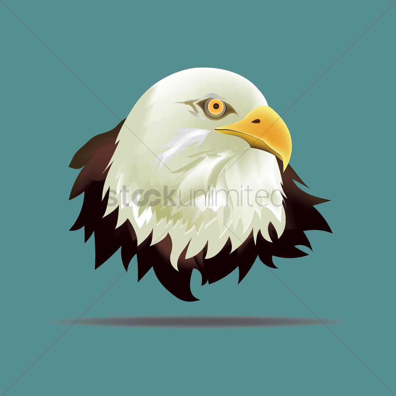 1300x1300 Eagle Face Vector Image