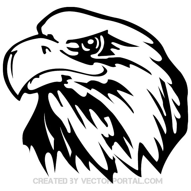 660x660 Eagle Face Front Vector