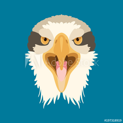 500x500 Angry Eagle Head Face Vector Illustration Flat