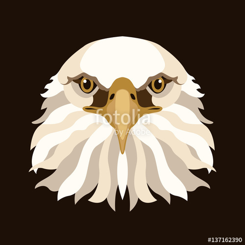 500x500 Eagle Head Face Vector Illustration Style Flat Stock Image And