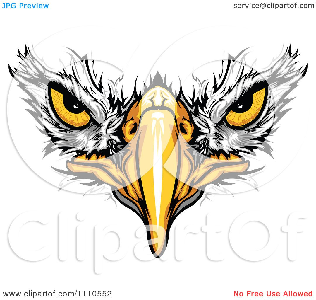1080x1024 Clipart Bald Eagle Face With Menacing Eyes Royalty Free Vector