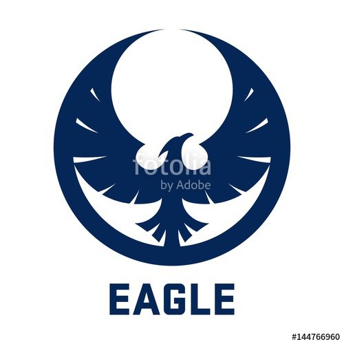 500x500 Eagle Logo, Eagle Wing Logo, Eagle Fly Logo, Circle Eagle Design