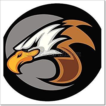 355x355 Eagle Mascot Head Vector Graphic Il Paper Print Wall