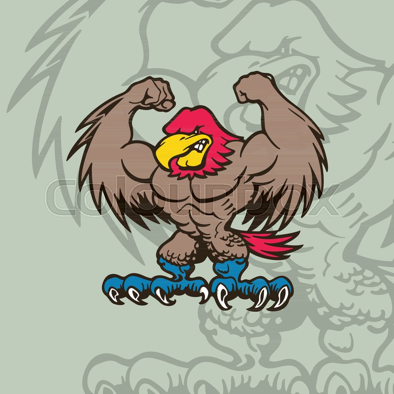 800x800 Eagle Mascot Character . Cartoon Character Vector Illustration