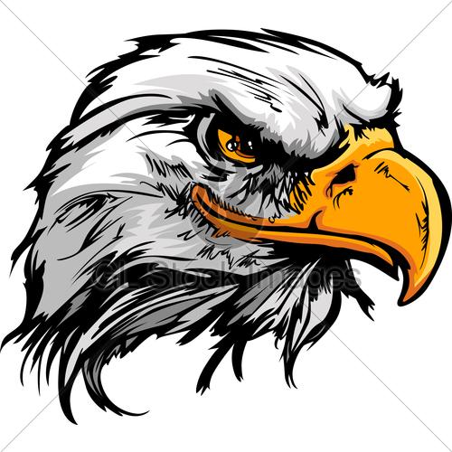 500x500 Graphic Head Of A Bald Eagle Mascot Vector Illustration Gl Stock