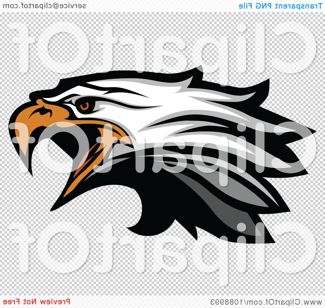 1080x1024 Best Hd Clipart Attacking Bald Eagle Mascot Head Royalty Free