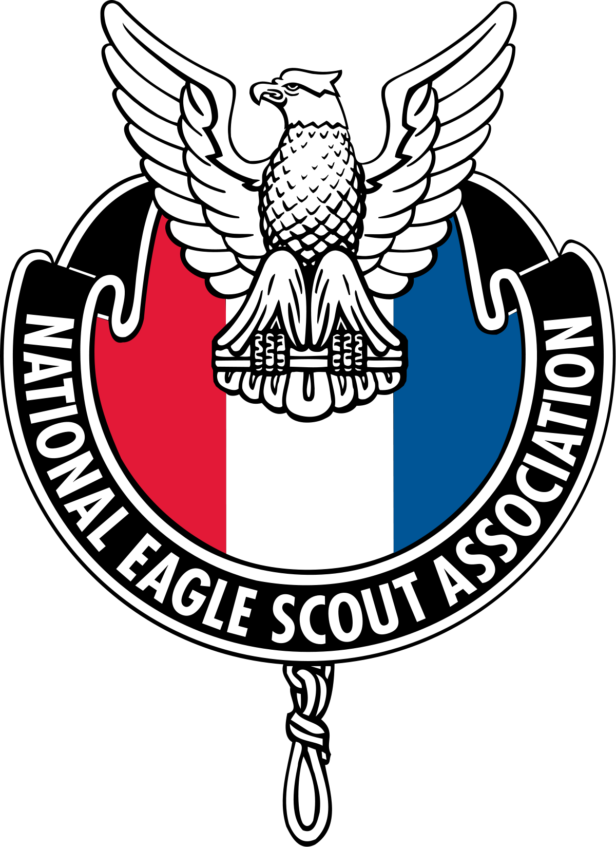 Eagle Scout Logo Vector At Getdrawingscom Free For Personal Use
