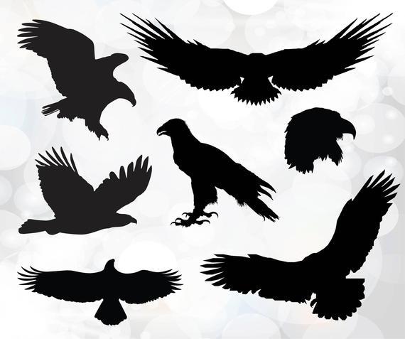 570x477 Eagle Svg Bald Eagle Svg Fly High Graphic Eagle Vector Etsy