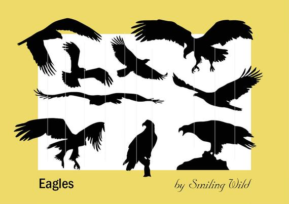 570x403 Eagle Clipart Eagle Svg Eagle Silhouette Black Bird Etsy