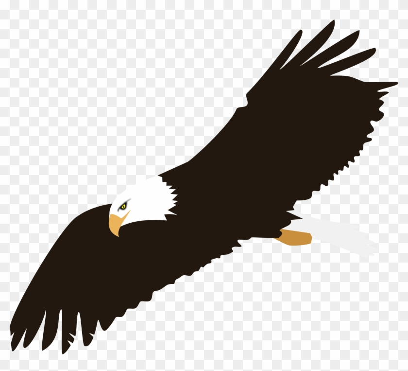 840x763 Soaring Bald Eagle Vector Clipart Image