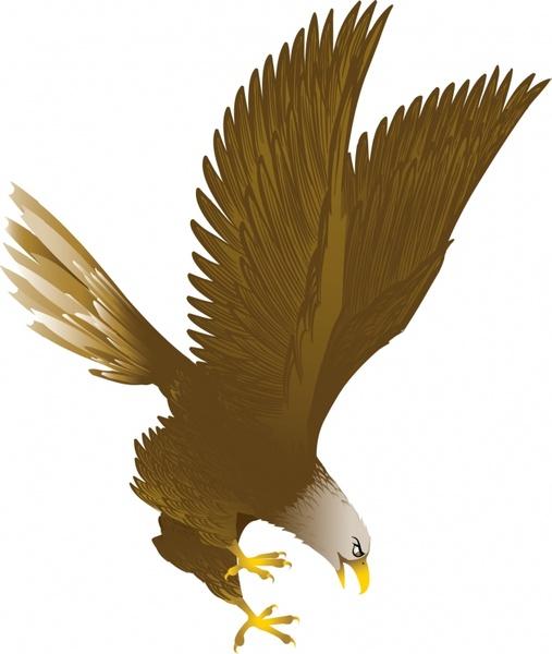 507x600 Eagle Vector Free Vector In Adobe Illustrator Ai ( .ai ) Vector