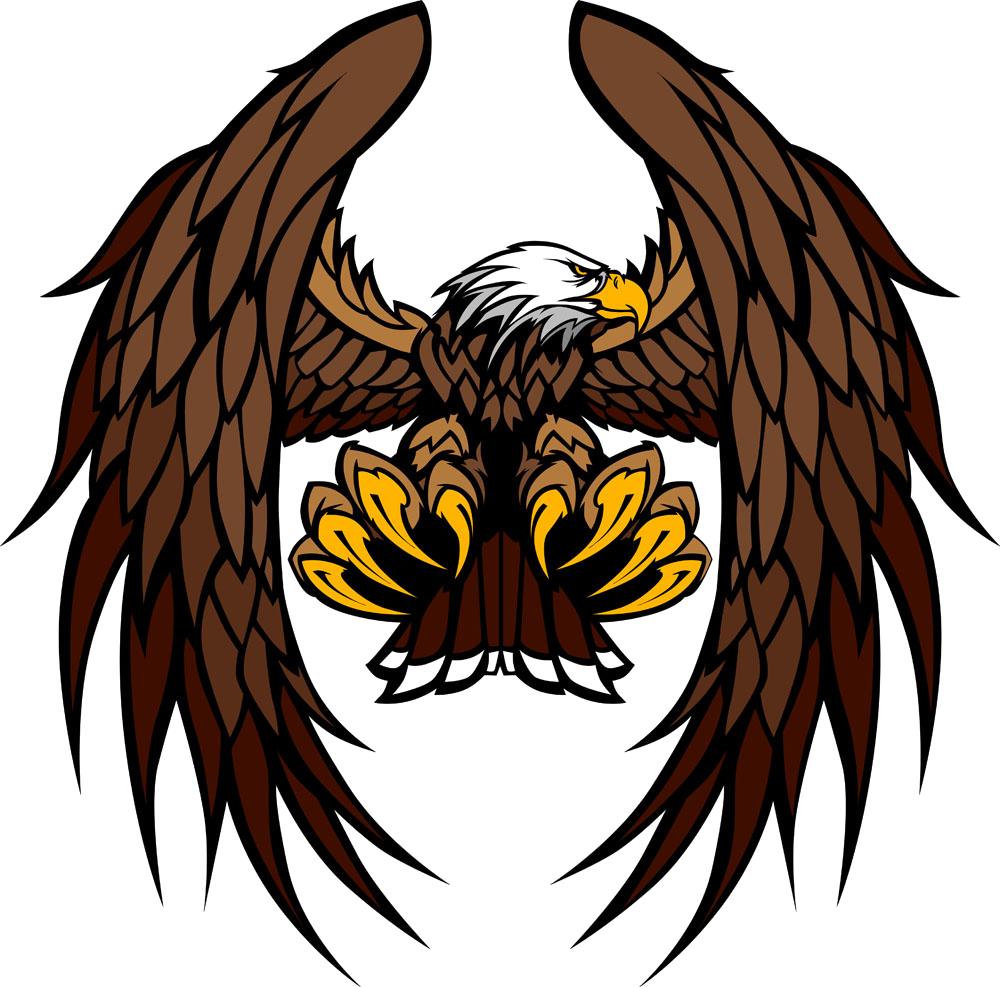 1000x987 Bald Eagle Clip Art