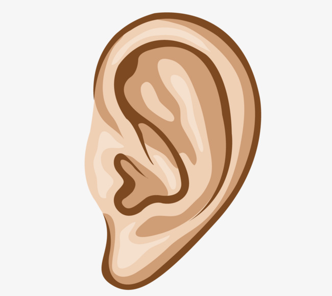 650x579 Vector Cartoon Ear Hearing Site, Vector, Cartoon Ear, Human Ear