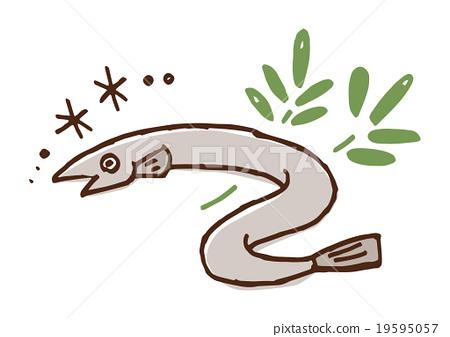 450x337 Unagi, Garden Eel, Vector