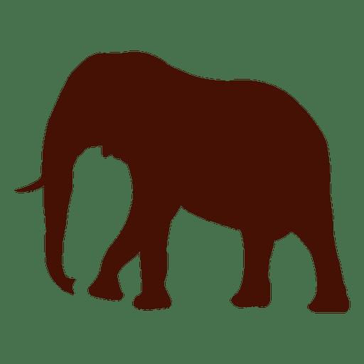 Elefante Vector