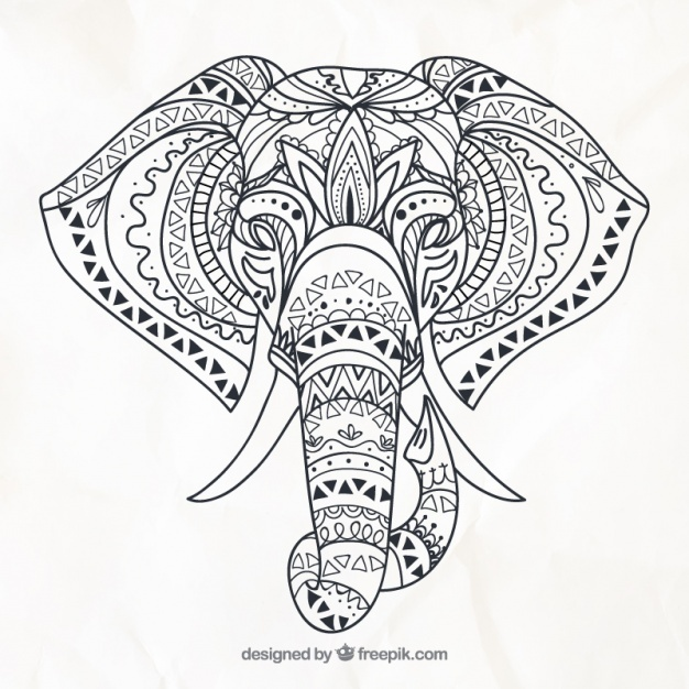 626x626 Elephant Vectors, Photos And Psd Files Free Download