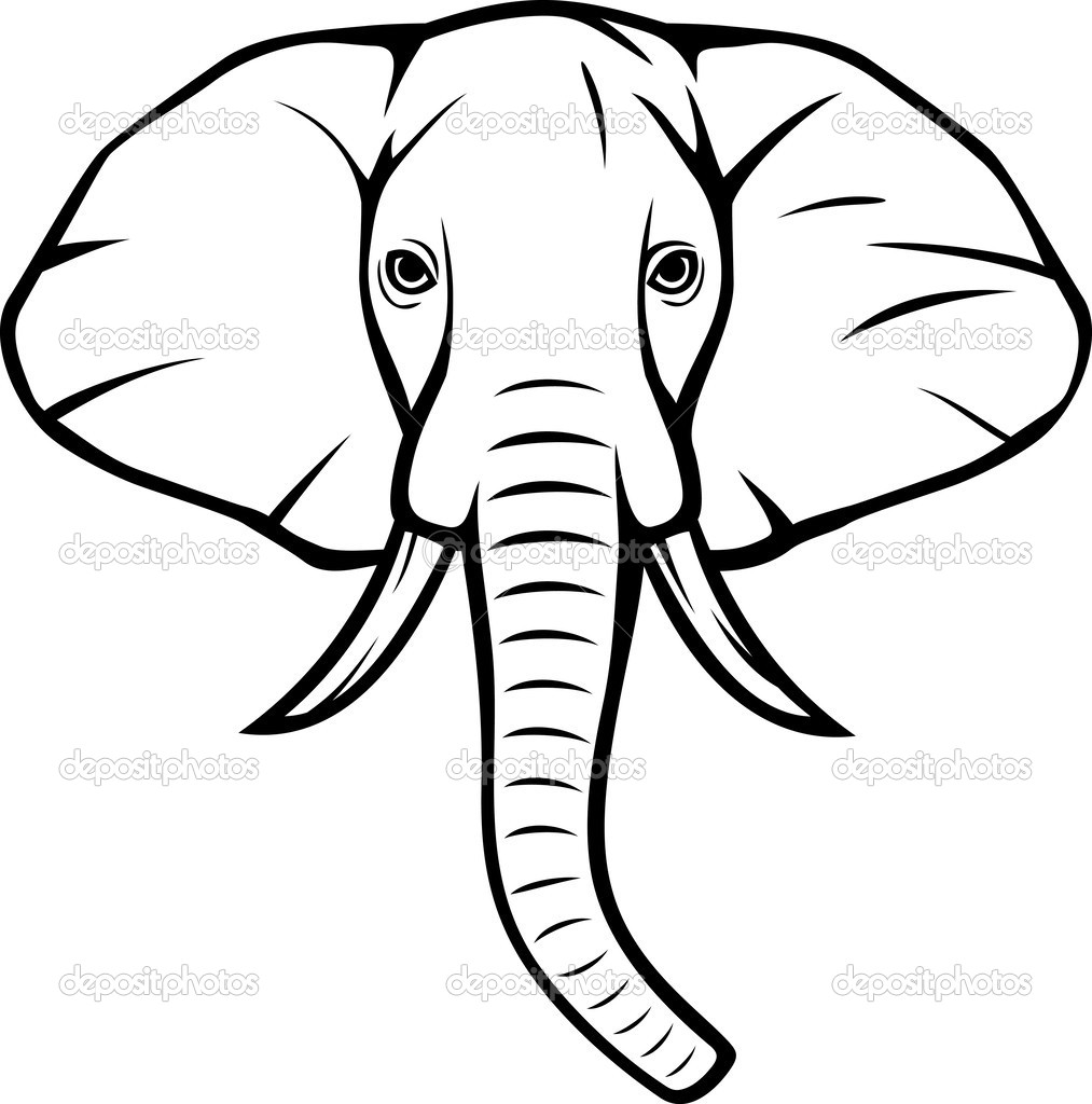 1013x1024 Collection Of Elephant Head Drawing Illustration High