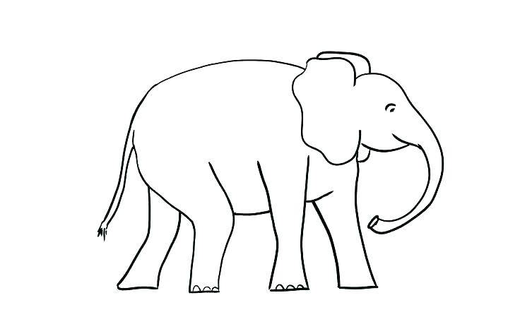 736x442 Coloring Pages Of Elephants Elephant Face Coloring