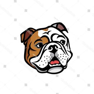 300x300 English Bulldog Face Isolated Vector Illustration Orangiausa