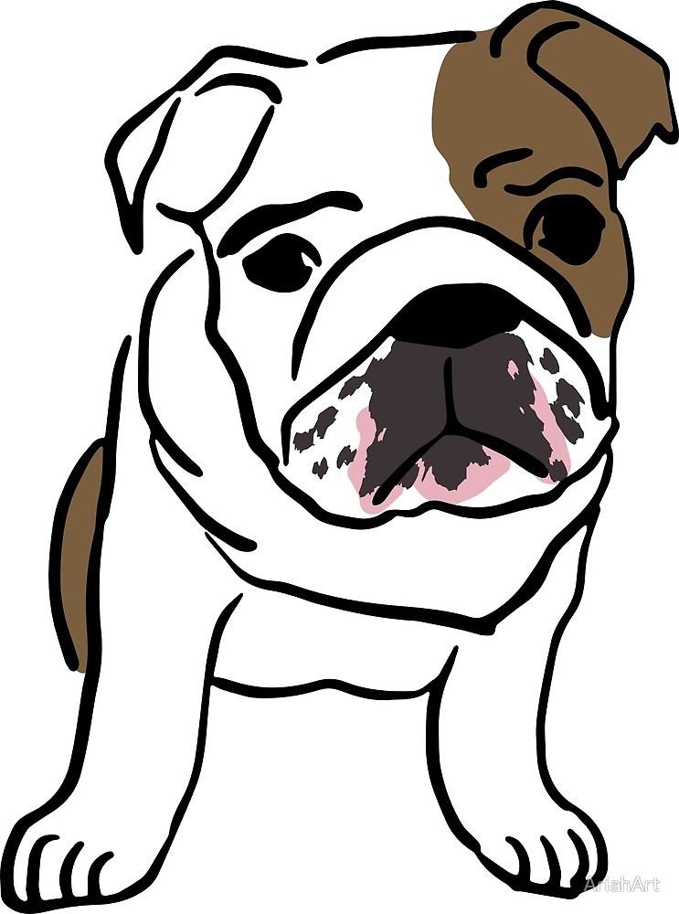 743x1000 English Bulldog Vector Illustration By Ariahart Redbubble